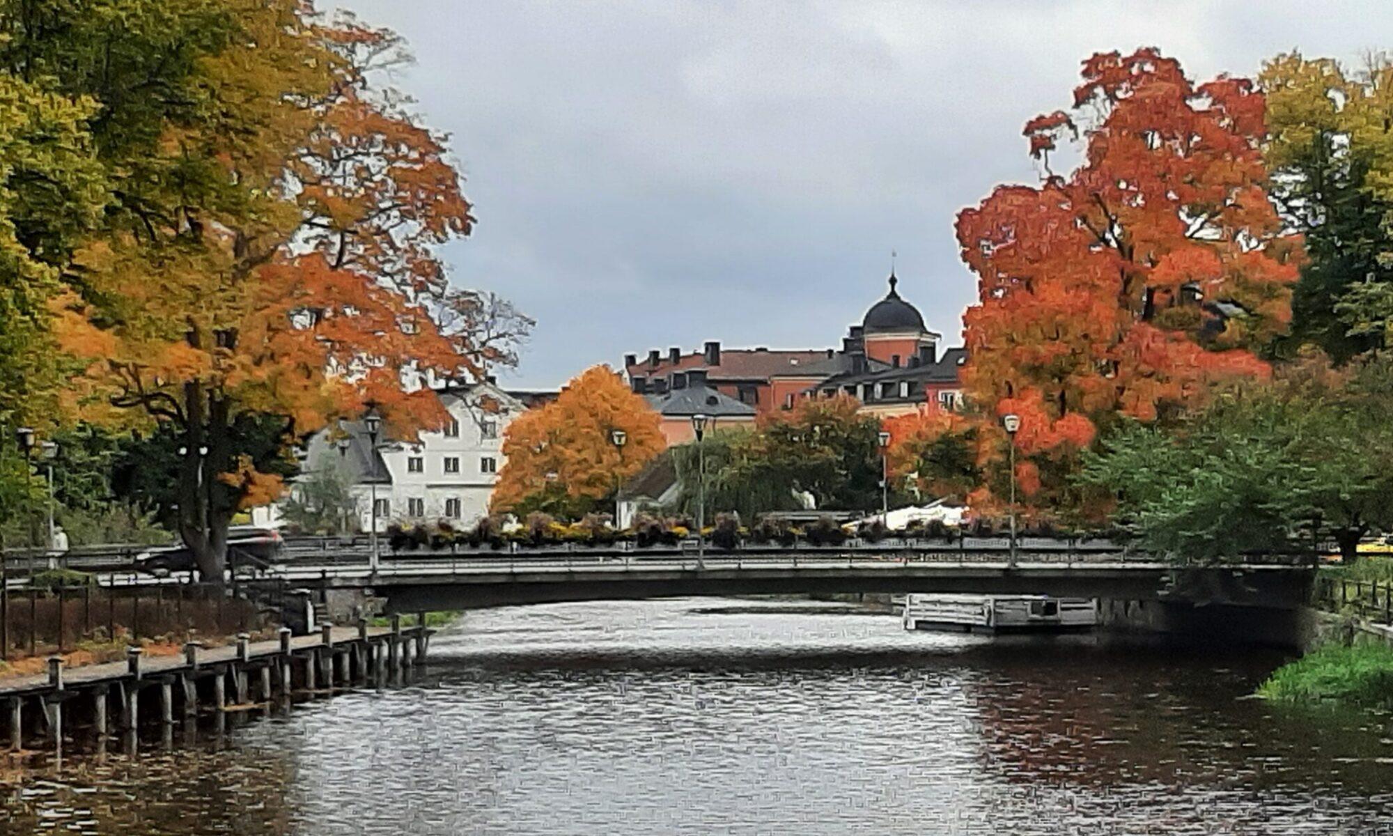 Föreningen Aktiva Seniorer i Uppsala